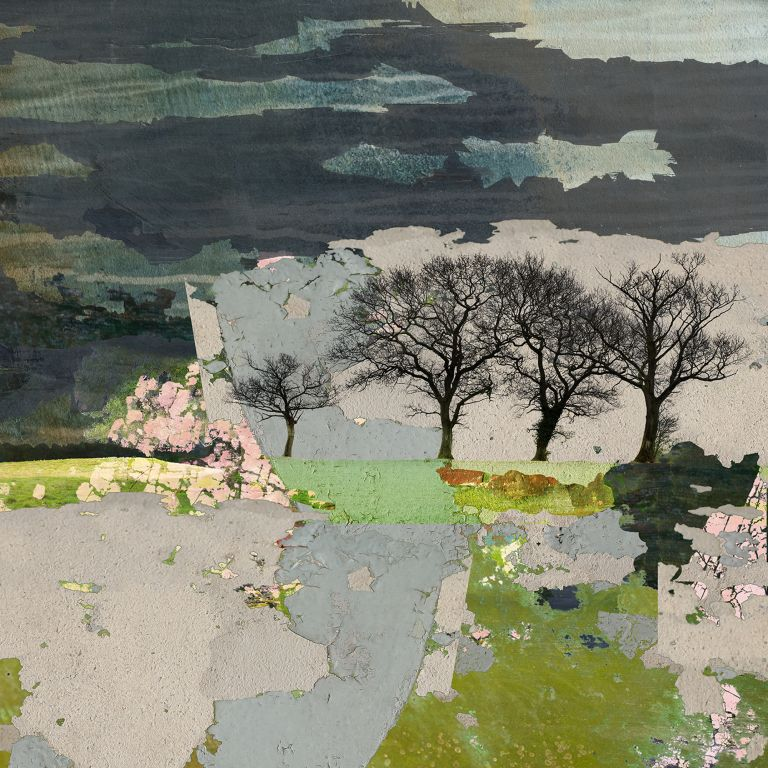 photomontage, trees, landscape, abstract landscape, digital photomontage, claire gill artist, photography