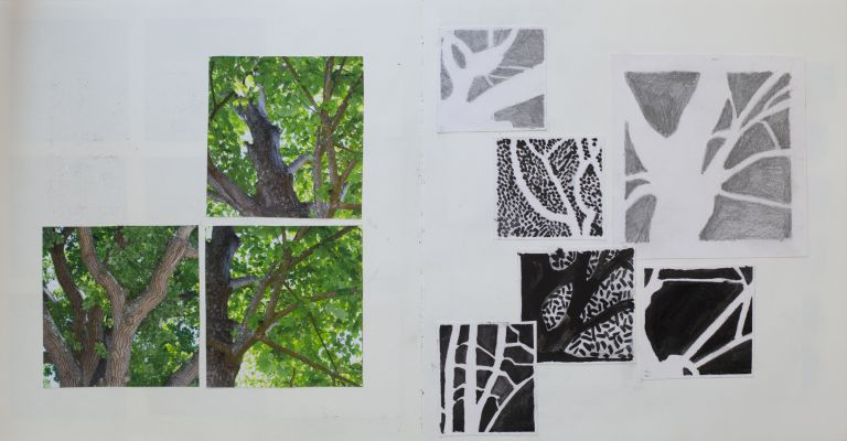 tree studies, drawings, tress, visual inspiration, sketchbook pages, claire gill sketchbook