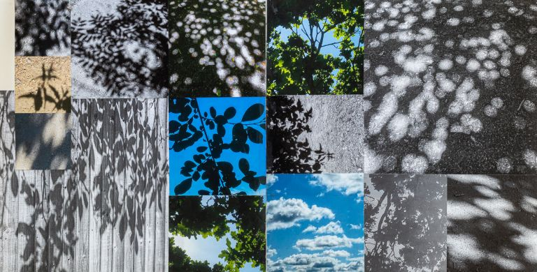 visual research, shadows, leaves, inspiration board, sketchbook, lindfield,claire gill artist