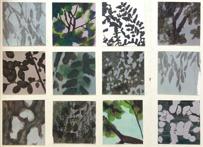 Claire Gill, Sketchbook, shadow drawings, drawing studies, nature studies, leaf drawings