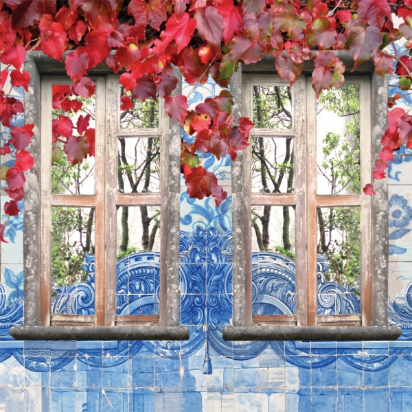 Claire Gill, Artist, Wallscape 11 Fine Art greeting Card, Fine Art greeting Card, digital photomontage, window, Sintra, Portugal, buy art,