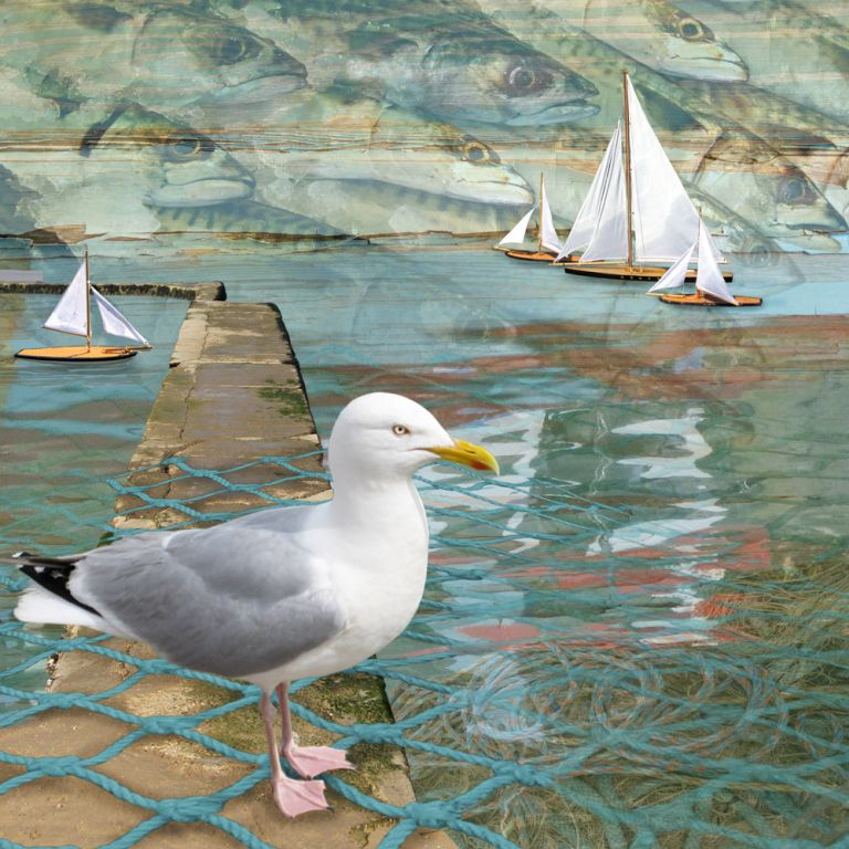Claire Gill. fine art card, fine art greeting card, greeting card, seascapes, photomontage, coastal art, limited edition prints, seascape 16, seagull, sail boats